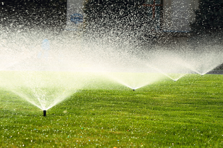 Keep Your Head Above Water With a New Irrigation System