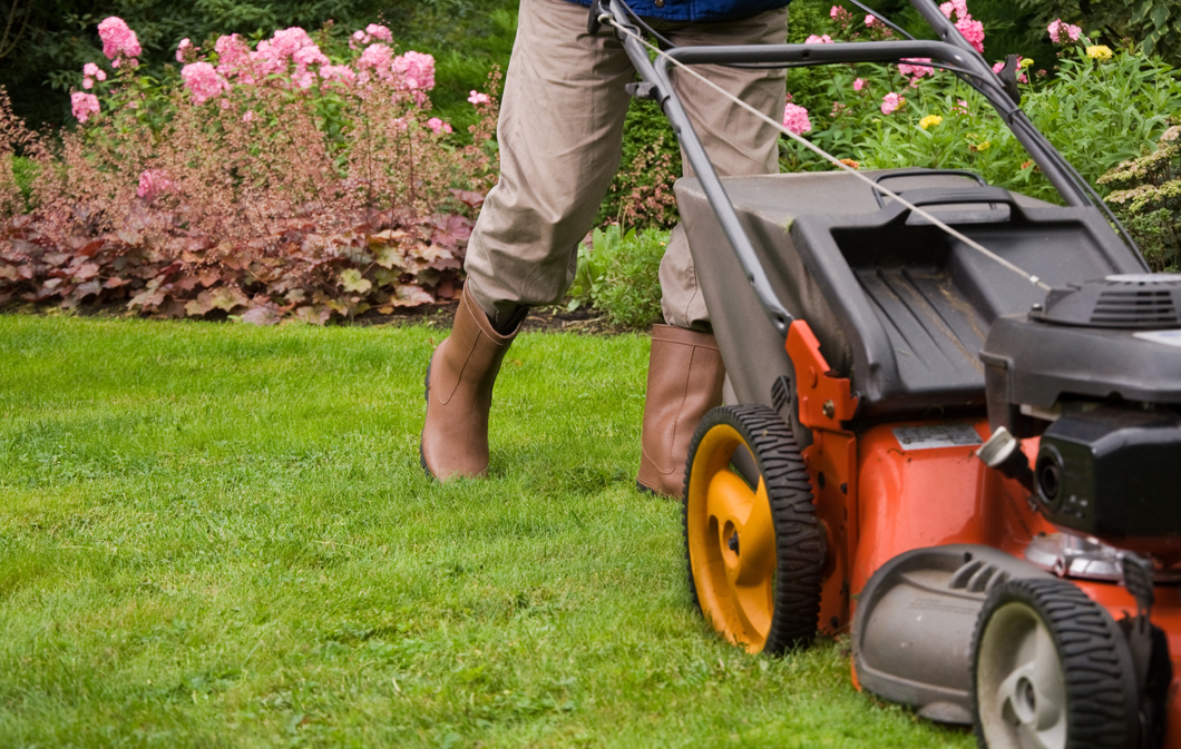 Upgrade Your Curb Appeal With Regular Lawn Maintenance